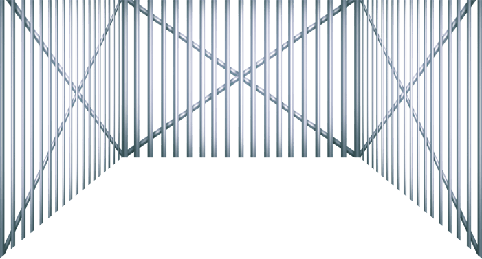 Grille Pirate