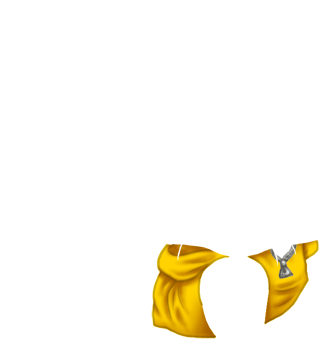 Adopte un(e) Furet Citrouille