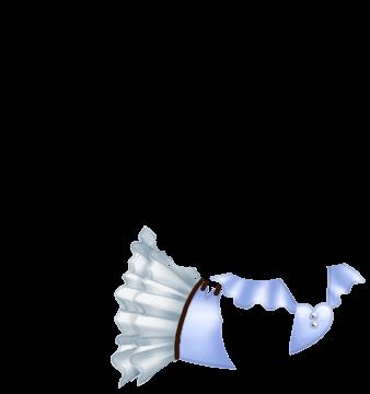 Furet Panda