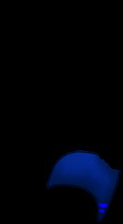 Adopte un(e) Furet Irisor