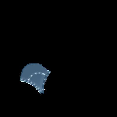 Adopte un(e) Furet Bleu léopard