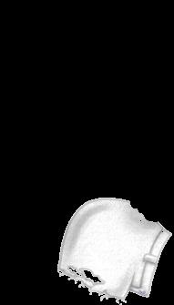 Furet Glace