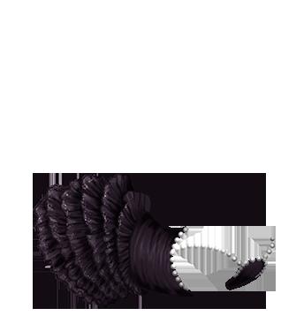 Furet Iona
