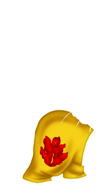 Adopte un(e) Furet Hibou