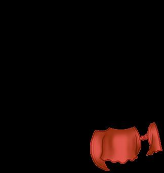 Furet Pistache
