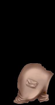 Adopte un(e) Furet Cacatoès