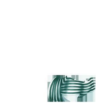 Adopte un(e) Furet Lagon