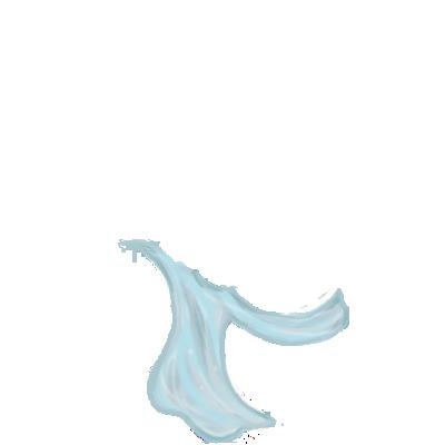 Adopte un(e) Furet Constellation