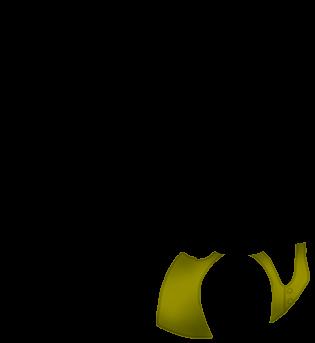 Adopte un(e) Furet Foustache