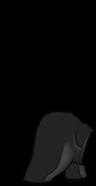 Adopte un(e) Furet Beige Gris