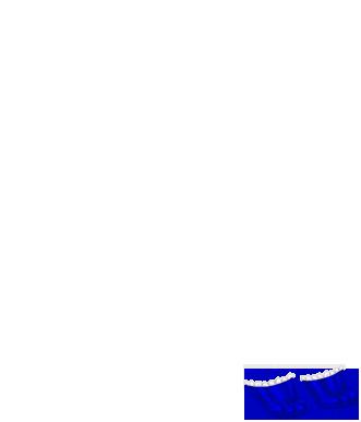 Adopte un(e) Furet Beige Brun