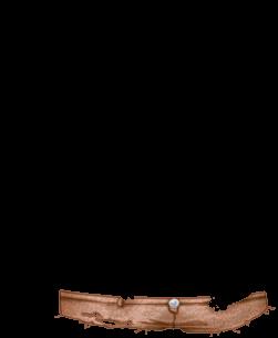 Adopte un(e) Hamster Gruyère