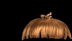 Adopte un(e) Hamster Neige