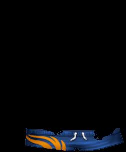 Adopte un(e) Hamster Irisor