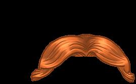 Adopte un(e) Hamster Poil de carotte