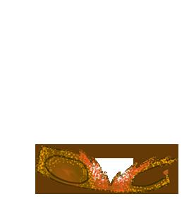 Adopte un(e) Hamster Okami