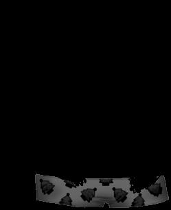 Hamster Chauve-Hamster