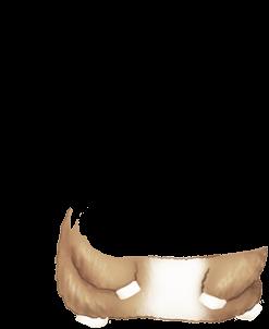 Hamster Noir et Blanc