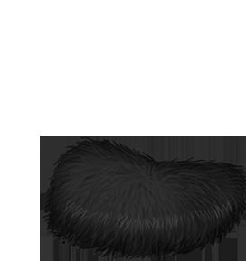 Adopte un(e) Hamster Scratch