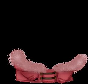 Adopte un(e) Hamster Spicy