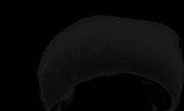 Hamster Zèbre