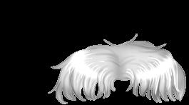 Adopte un(e) Hamster Glace