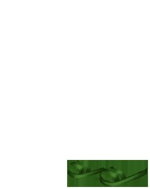 Adopte un(e) Lapin Pâkœuf