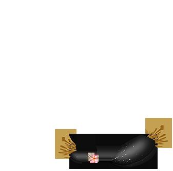 Adopte un(e) Lapin Poiledecarotte