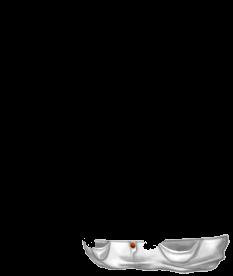 Adopte un(e) Souris Crème albinos