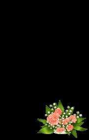 Adopte un(e) Souris Abricot angora