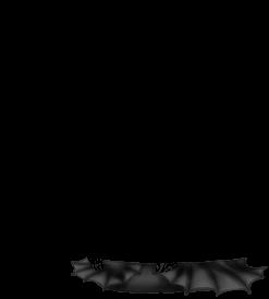 Souris Noire