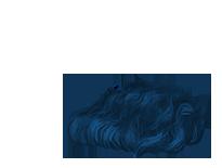 Adopte un(e) Souris Crominavi