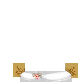Adopte un(e) Souris Marron rayé