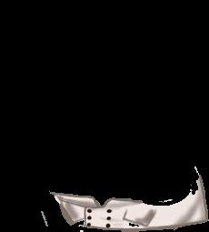 Adopte un(e) Souris Fushia