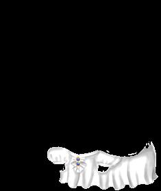 Souris Arc-en-Ciel
