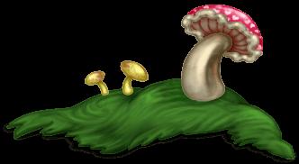 Champignon Herbe 2 Forêt Enchantée