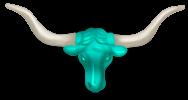 Tête de Bison