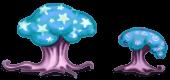 Champignons Cromirland