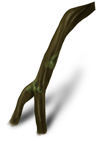 Petite branche Ogresse