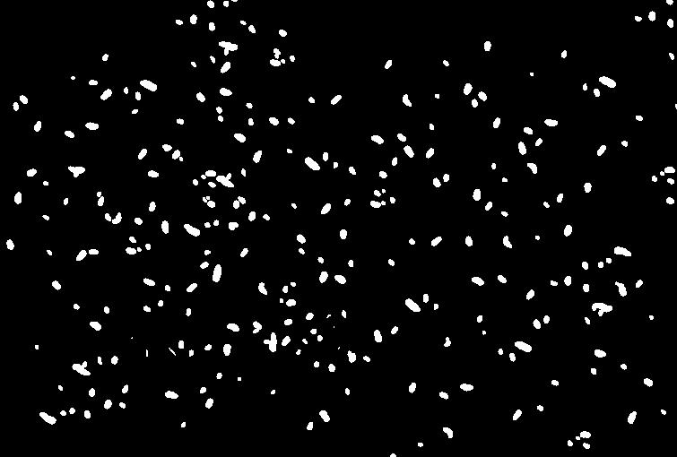 Pluie de confettis
