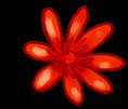 Grande Fleur