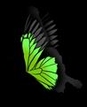 Grand Papillon