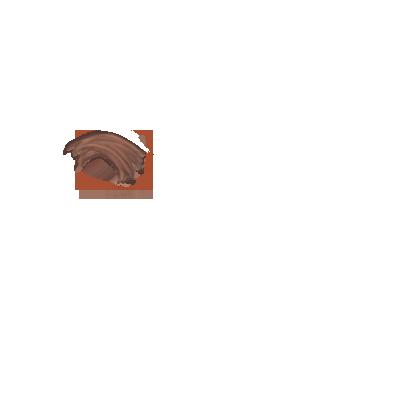 Adopte un(e) Furet CroGirafe