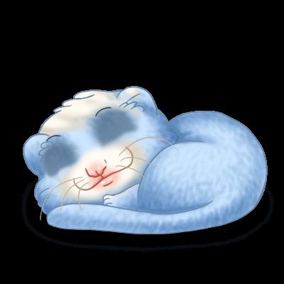 Adopte un(e) Furet Bleu Pastel