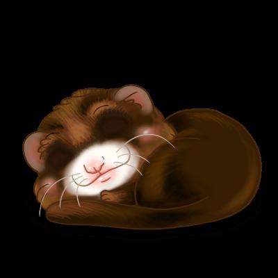 Furet Chocolat