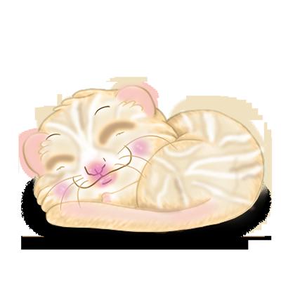 Adopte un(e) Furet Crème