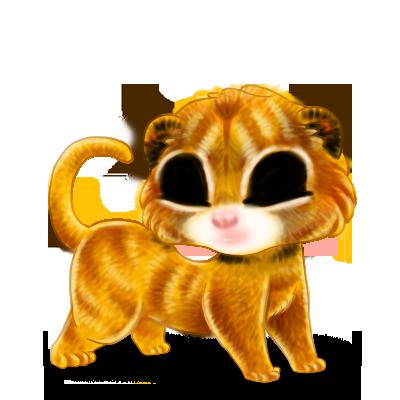 Adopte un(e) Furet Lion