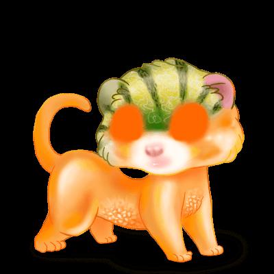 Adopte un(e) Furet Melon
