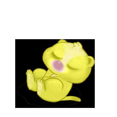 Adopte un(e) Furet Pomme