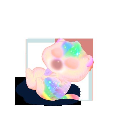 Adopte un(e) Furet Rainbow